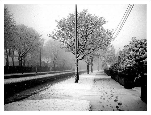 Alan B. Footprints in the Snow (640x489)